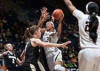 Cal Basketball W