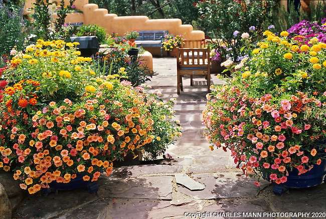 Susan Blevins of Taos, New Mexico, created an elaborate home garden featuring containers, perennial beds, a Japanese themed path and a regional style that reflectes the Spanish and pueblo architecture of the area. Containers bursting with colorful annuals flank an entry to the walled patio and dining area.
