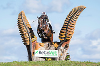 1-ALL RIDERS: 2015 NZL-Kikikihi International Horse Trial