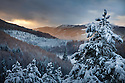 Scotland: Scenery