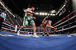 Mar 17; New York, NY, USA; Sergio Martinez is knocked down by Matthew Macklin (green trunks) during their 12 round World Middleweight championship bout at the Theater at Madison Square Garden.
