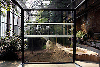 Plant History Glasshouse (formerly Australian Glasshouse), 1830s, Rohault de Fleury, Jardin des Plantes, Museum National d'Histoire Naturelle, Paris, France. Low angle view of the new double door system to the glass and metal structure, showing the luxuriant Tropical vegetation in the background, lit by the afternoon sun.