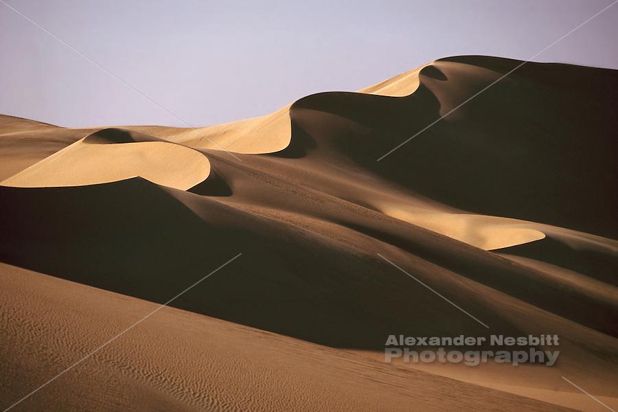 Egypt, 2000 - Sinous dune ridge in the great sand sea