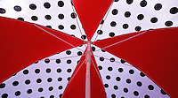 Graphic and Colorful Umbrellas