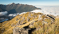 Alpine vistas from Mt. Fox in Southern Alps , Westland Tai Poutini National Park, West Coast, World Heritage Area, New Zealand