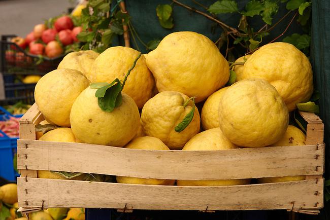Amalfi coast lemons - Positano, Italy