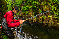 Flyfishing guide from Sitka Alaska Outfitters fishing Sawmill Creek, near Sitka, Alaska USA.