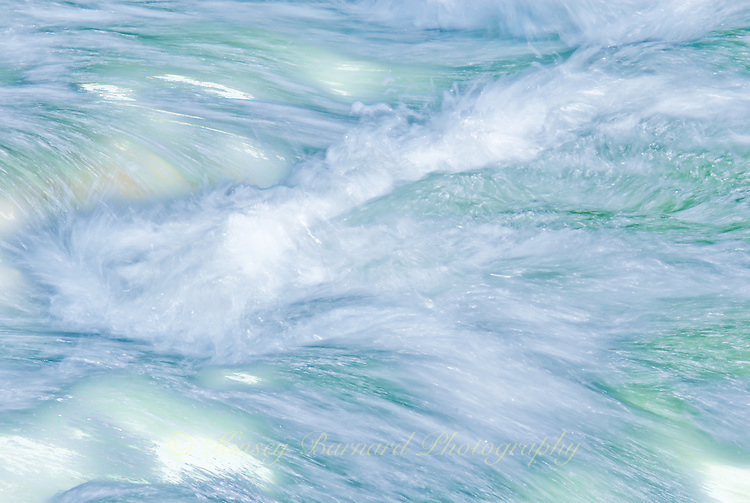 &quot;FLATHEAD FLYING&quot;<br /> <br /> The rushing waters of the Flathead River 24 x 36 signed, original, gallery wrapped wrapped canvas $2,500. Check for availability