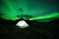 Northern Lights - Aurora Borealis fill sky over tent and mountains, Moskenesøy, Lofoten Islands, Norway