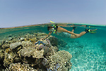 Split level of shallow coral reef and snorkler.Rowley Shoals, Western Australia