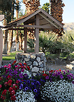 Flowers surround wishing well in Palm Springs California,