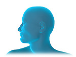 Transparent Figure; this 3d medical image features a side view of a man's face.