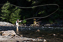 WA09159-00...WASHINGTON - Fly fishing on the Middle Fork of the Snoqualme River near North Bend. (MR# J9)