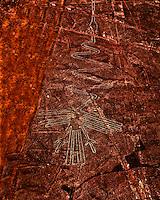 The Crane  Nazca Lines. Peru  World's greatest geolgyphs   Nazca Plain   Nazca LInes National Acheological Park   UNESCO World Heritage Site