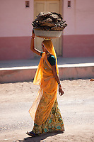 Indian woman in sari carrying cow dung pats to dry for cooking fuel at Khore village in Rajasthan, Northern India