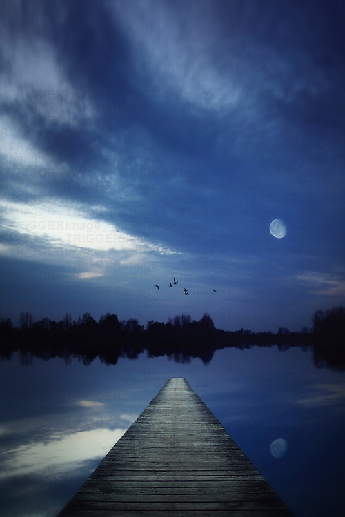 Night scene of a lake seen from a jetty with the moon shining and some birds flying over