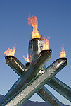 Winter Olympic Games 2010