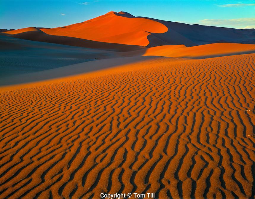Dunes at Sossusvlei Namib-Naukluft National Park, Namibia, Africa  Namib Desert  Worlds tallest dunes  Dunes 1,000 feet high  February