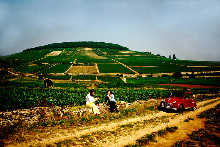France: Burgundy. .Picnic on hillside south of Beaune...Photo Copyright Lee Foster, 510/549-2202, lee@fostertravel.com, www.fostertravel.com...Photo #: frburg103