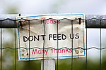 "Hand made sign on a farm gate - ""Please do not feed us"""