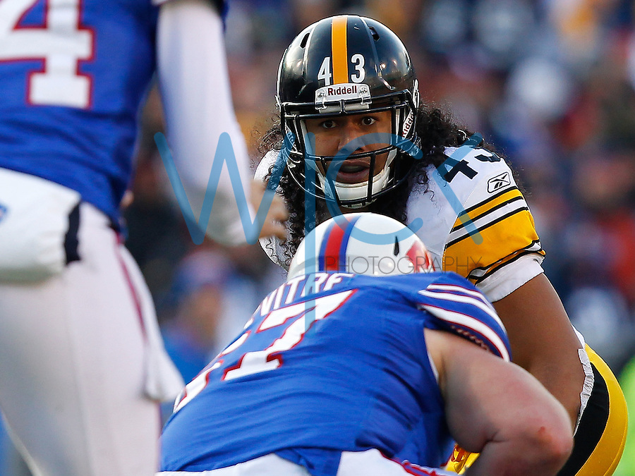 ORCHARD PARK, NY - NOVEMBER 28:  Troy Polamalu #43 of the Pittsburgh Steelers watches the snap during the game against the Buffalo Bills on November 28, 2010 at Ralph Wilson Stadium in Orchard Park, New York.  (Photo by Jared Wickerham/Getty Images)