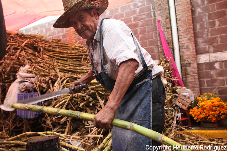 An old Native nahuatl cuts sugar cane to sell in the tianguis in Acaxochitlan, in northern state of Hidalgo, during the festivities of the Day of the Deads. Hundreds of Native villages pay homage to their deads on the eve of November 2 as a tradition since the preHispanic times. Photo by Heriberto Rodriguez