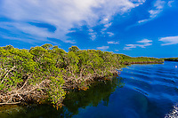 John Pennekamp Coral Reef State Park, Key Largo, Florida Keys, USA