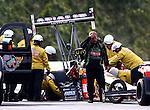 NHRA 2014 Race03 Gainesville