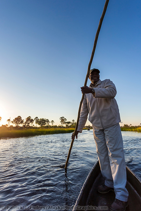 Man poles through the waterway of the Okavango Delta, Botswana, Africa