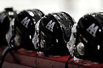 1-14-15, Pioneer High School vs Dearborn Unified hockey