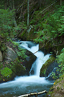 This little waterfall is located on the Silver Lead Creek in Marquette County, Michigan.