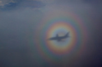 A rainbow encircles a plane.