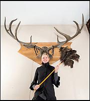 Elk'n'Safety fears move massive antlers.