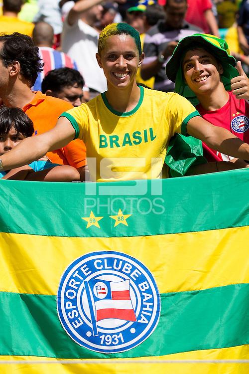 Brazil fan