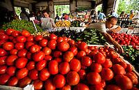 Charlotte Regional Farmers Market