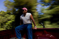 John Stuedemann's helper rides in the bed of a truck while working with cattle in Comer, Ga. on Monday, Sept. 25, 2006. Stuedemann says he applies techniques with his cattle that he has learned since childhood in Iowa, such as positive reinforcement, minimal occurrences of pain or fear, and calm motions and speech.