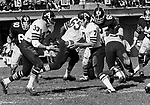 Joe Theismann Toronto Argonauts Quarterback hands the ball off to Bill Symons fullback 1971. Copyright photograph Scott Grant