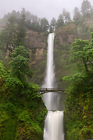 Foggy conditions and heavy rainfall at the Columbia Gorge's most iconic falls.
