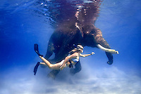 Snorkeling with Rajan, the swimming elephant of Havelock Island, A&N, India