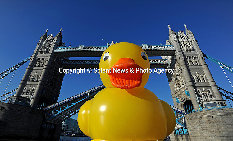 A giant rubber duck sails down river Thames to celebrate launch of Jackpotjoy.com's Facebook FUNdation.  SEE OUR COPY FOR DETAILS...Pictured:  Giant rubber duck sails through Tower Bridge river Thames to celebrate launch of Jackpotjoy.com's Facebook FUNdation..Pic:Zachary Culpin/ Solentnews.biz.© Solent News & Photo Agency