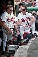MLB 1991