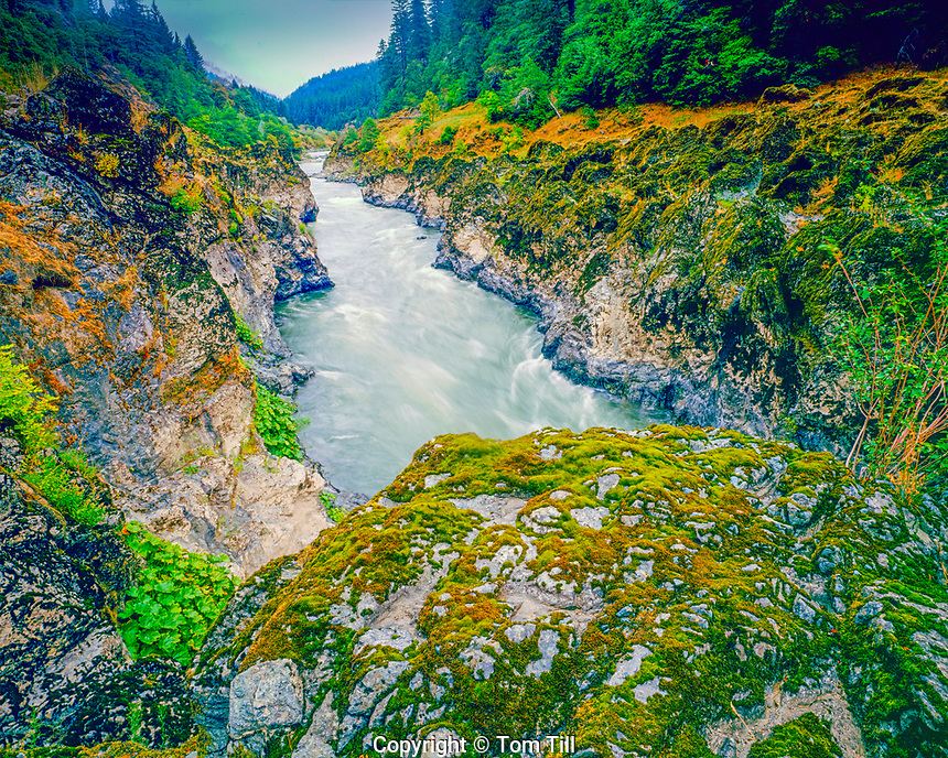Mule Creek Canyon, Rogue River Wild, Oregon, Siskiyou National Forest, August