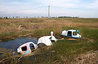 Reducing water levels in the Zhalong Wetlands, Heilongjiang Province. China. 2011