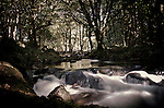 Water flowing over boulders with sunlight in woodland at Golitha Falls, Cornwall summer 2013