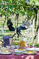 A table laid with delicious desserts under the vines of the vineyard of the Ristorante Arquade near Verona