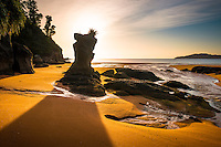 Sunrise on golden beach in Totaranui, Abel Tasman National Park, Golden Bay, Nelson Region, New Zealand