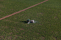 Spraying Liquid Ammonia on Crops; Southern Florida Agriculture