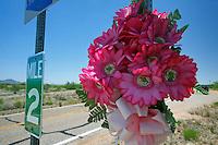deserto di Sonora Confine Arizona Messico Fiori in memoria di migranti morti nel tentativo di attraversare il deserto per giungere negli Stati Uniti