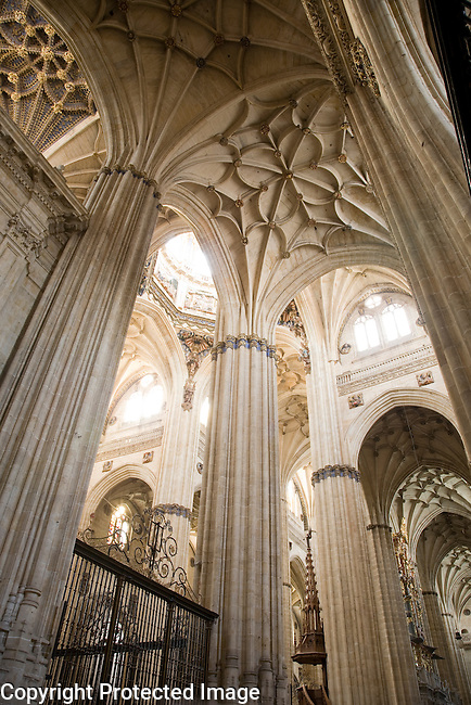 New Cathedral, Salamanca, Castile and Leon, Spain