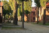 Alley to Appellplatz, Auschwitz